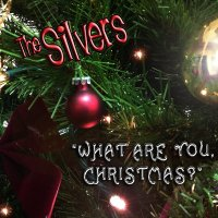Christmas Song by The Silvers