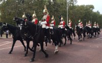 Horse brigade during changing of the guards